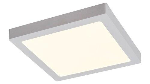 2665-2.jpg